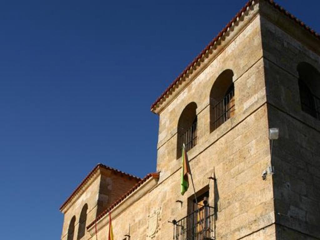 Pedrosa de Duero - Palacio de Guzmán