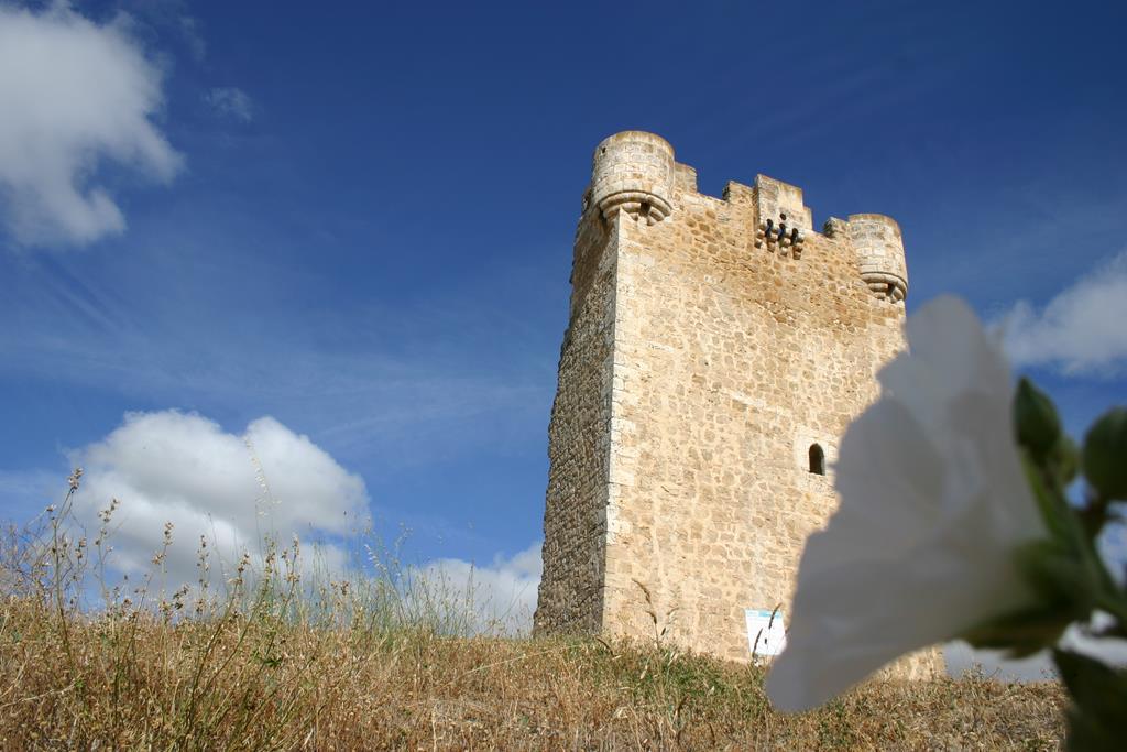 Hoyales de Roa - Torre